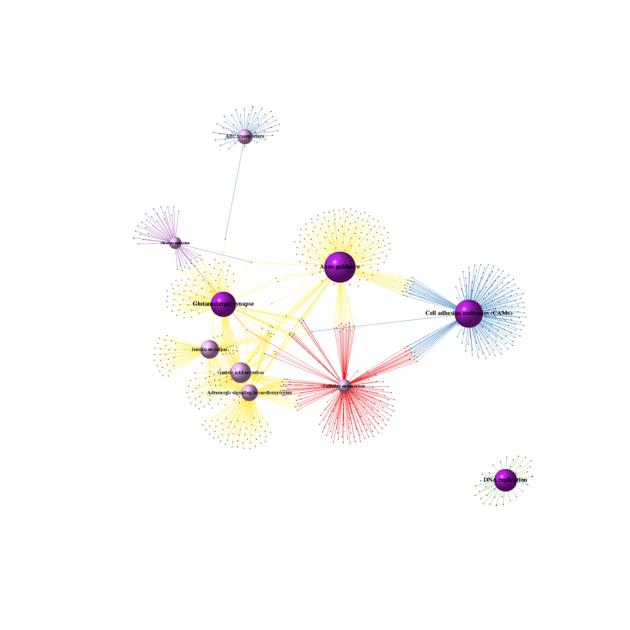 图3第二个图HBRR2-VS-UHRR2_PossionDis_Method_network