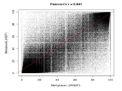 图7 所有样本甲基化水平相关性分析
